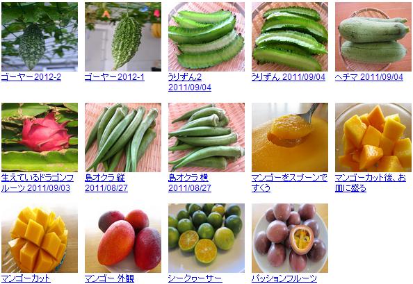 沖縄の無料写真素材 あじまぁ 野菜・果物写真素材