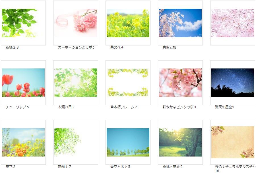 写真AC 花・植物写真素材