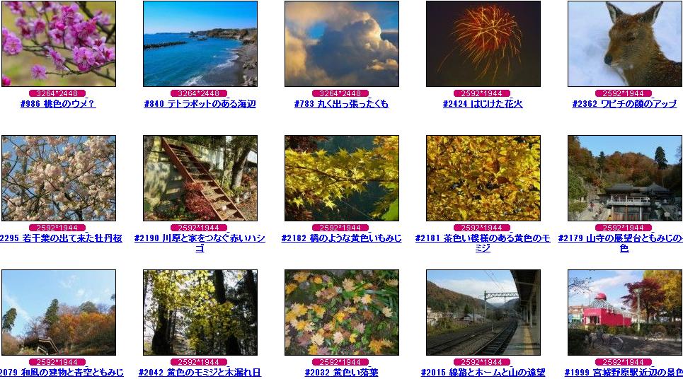 フリー写真素材 Futta.NET 季節写真