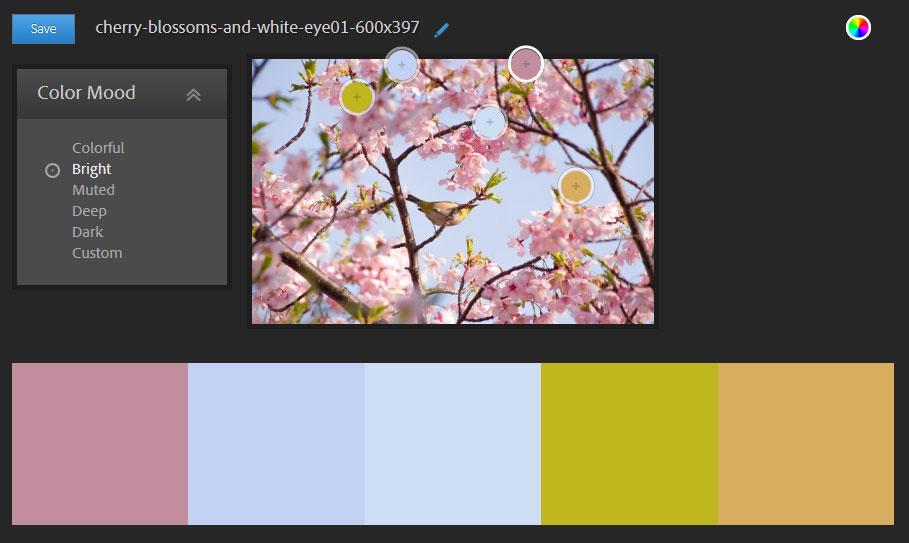 写真からカラーを抽出することも可能。