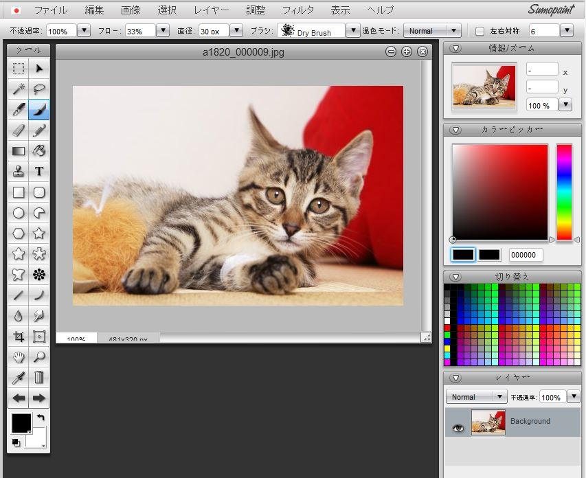 ペイントとPhotoshopが混ざったような画面